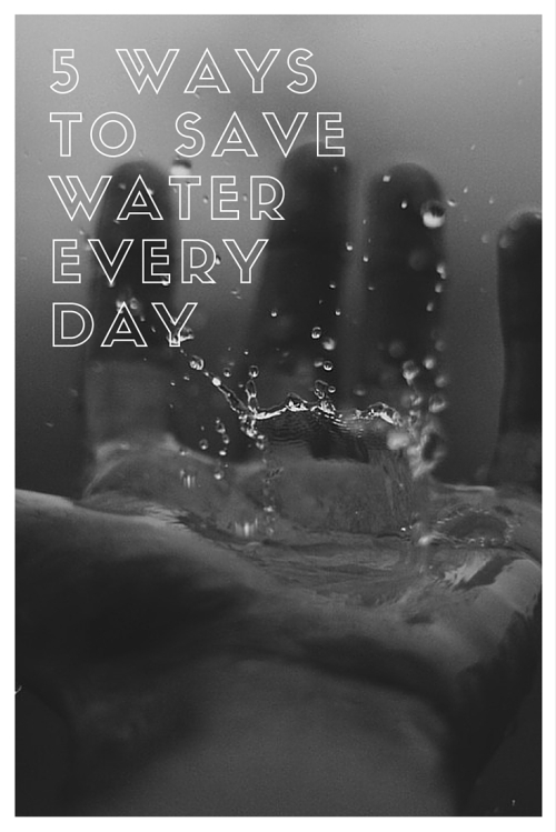 5 Ways to save water every day
