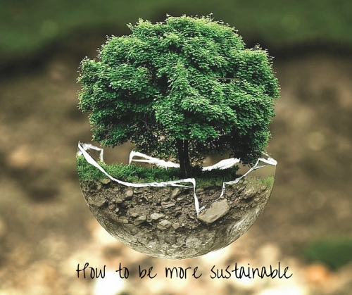 What does it being sustainable really mean- (1)