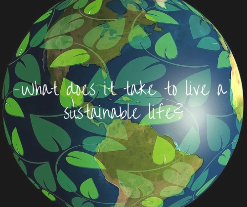 What does it being sustainable really mean- (2)